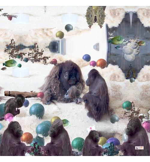 Zoo2_600